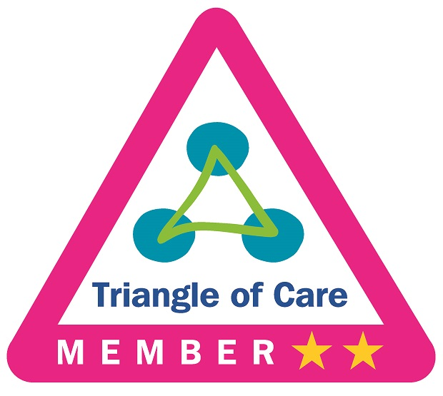 triangle of care icon