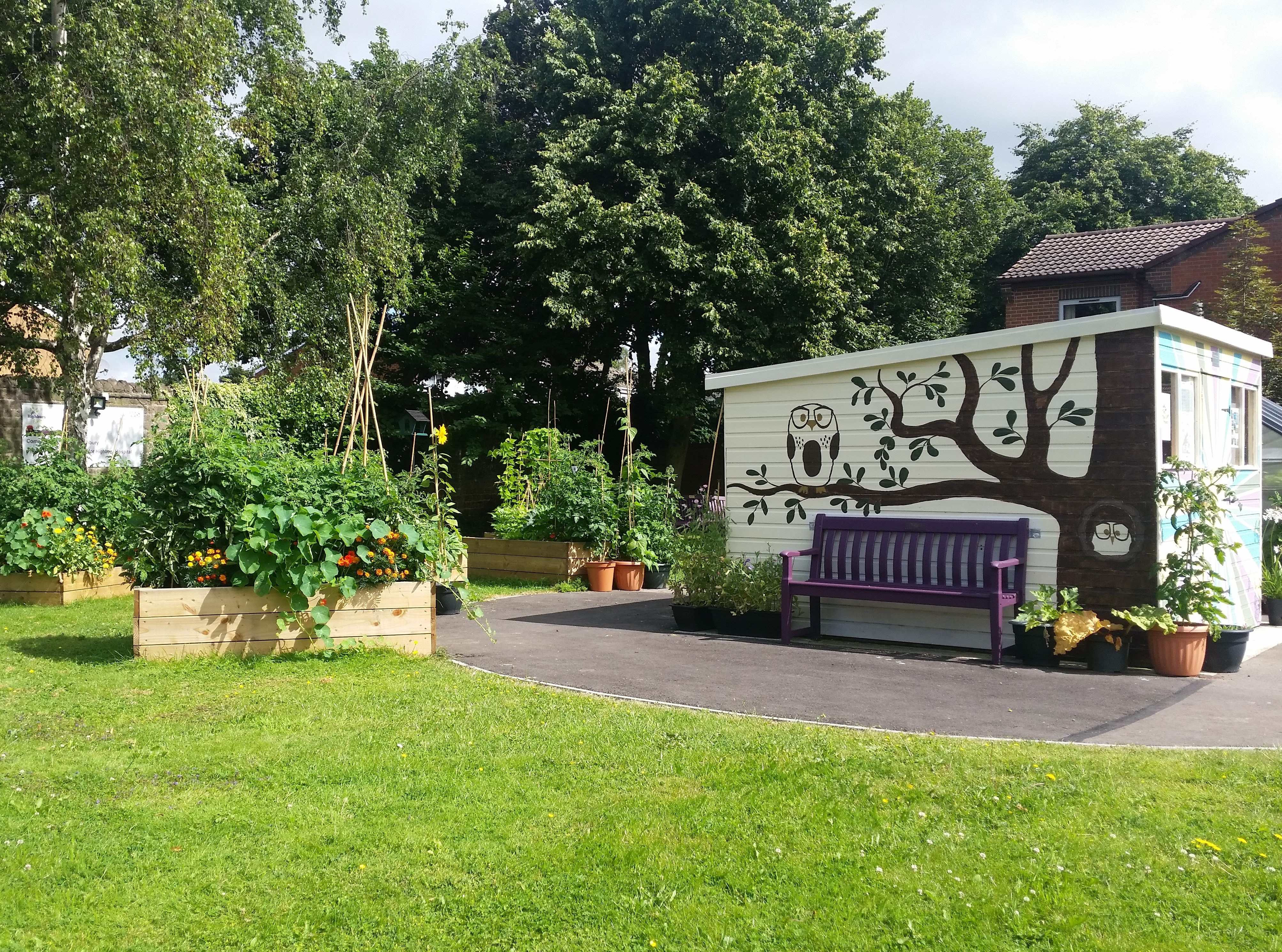 Picture of the community garden including raised beds, grass, trees, a bench and a shed